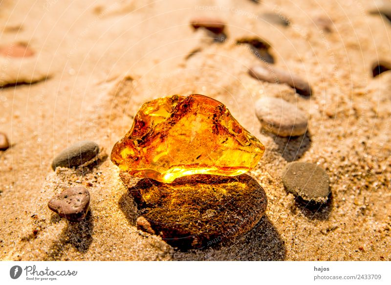 Amber at the Baltic Sea beach Juice Alternative medicine Beach Nature Sand Yellow Resin Old find Baltic region lithotherapy Precious stone mineral luminescent