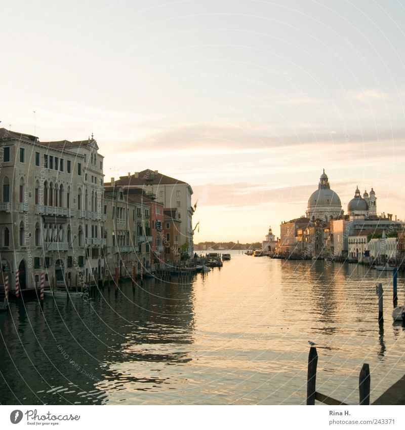 Summer Vacation & Travel Emotions Moody Trip Esthetic Tourism Authentic Transience Warm-heartedness Derelict Illuminate Decline Beautiful weather Venice