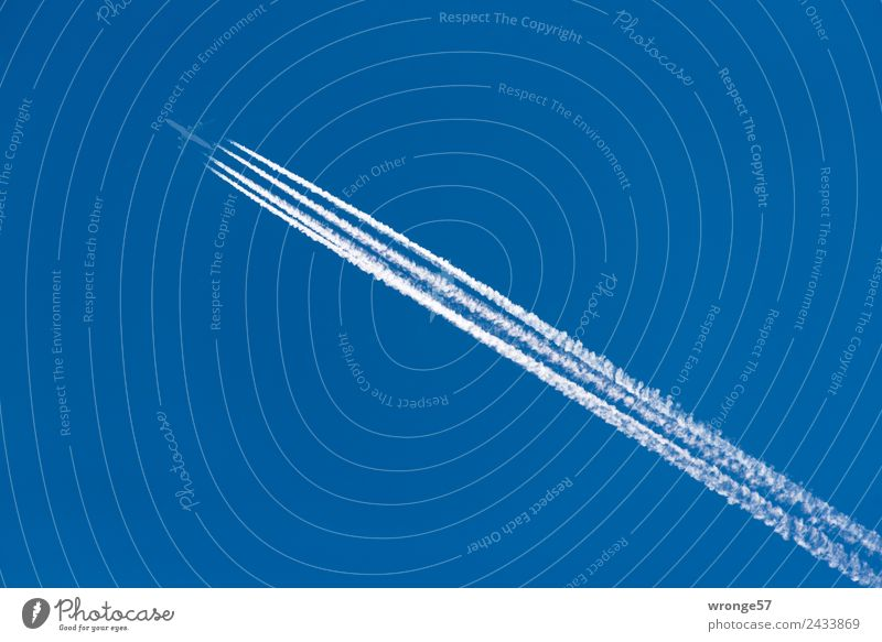 Sky Vacation & Travel Blue White Far-off places Cold Flying Aviation Speed Tall Airplane Fear of flying Cloudless sky Blue sky Diagonal Vapor trail