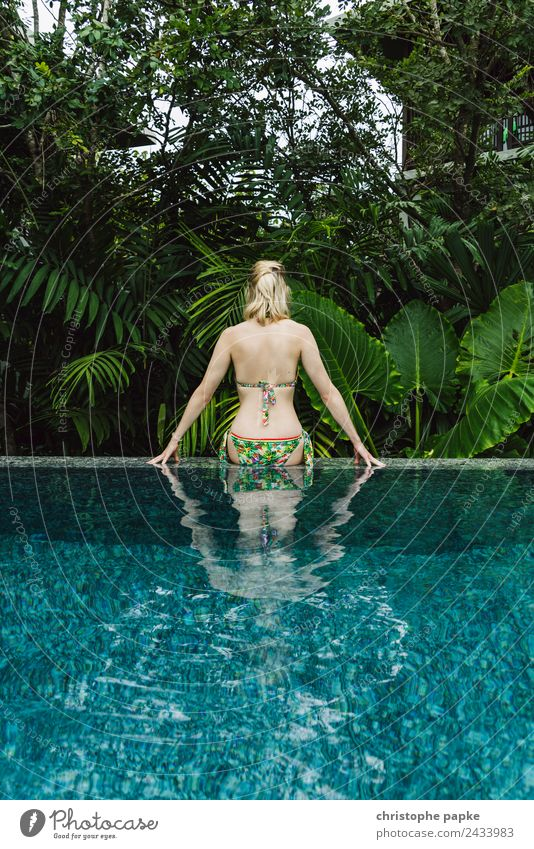 From the pool into the jungle Harmonious Well-being Contentment Senses Relaxation Calm Spa Swimming pool Swimming & Bathing Leisure and hobbies