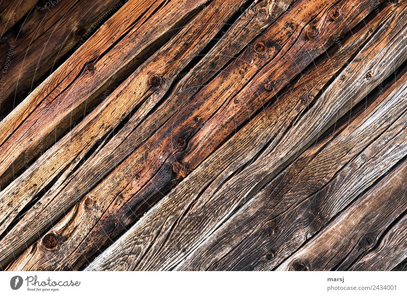 Together diagonally Wood grain Knothole Crack & Rip & Tear Diagonal Background picture Old Authentic Simple Sustainability Natural Original Brown Power