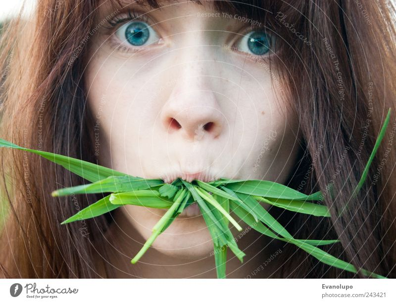 nabbed Human being Feminine Young woman Youth (Young adults) Head Hair and hairstyles Face Eyes Nose Mouth 1 Discover Eating Exotic Creepy Beautiful Near Brown
