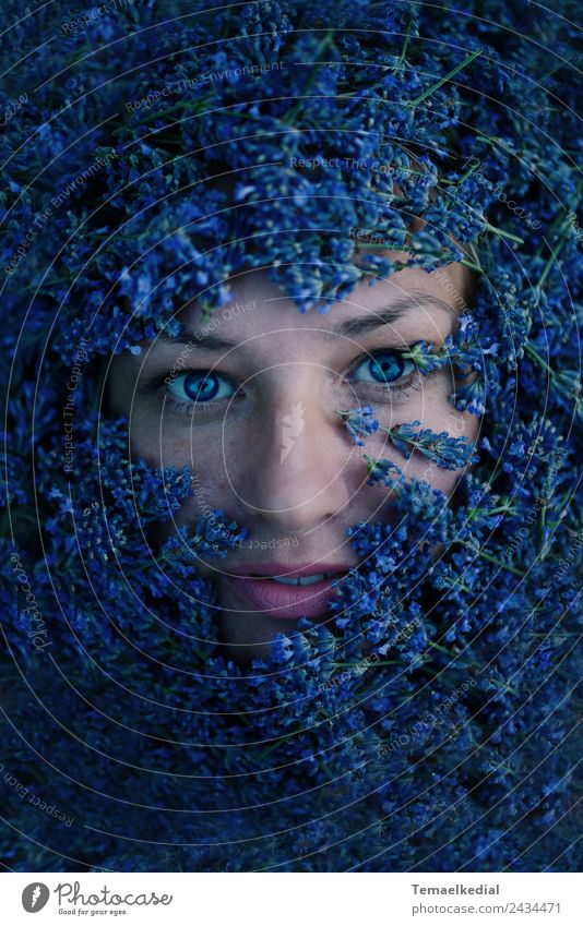Woman Human being Blue Plant Colour Beautiful Flower Face Adults Natural Feminine Art Exceptional Moody Esthetic Fantastic