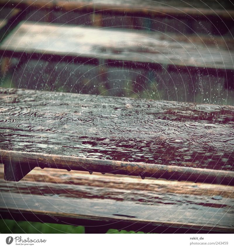 summer feeling Table Wood To fall Wet Apocalyptic sentiment Vacation & Travel Beer garden Rainwater Drops of water Dripping Comfortless Water Weather Gloomy