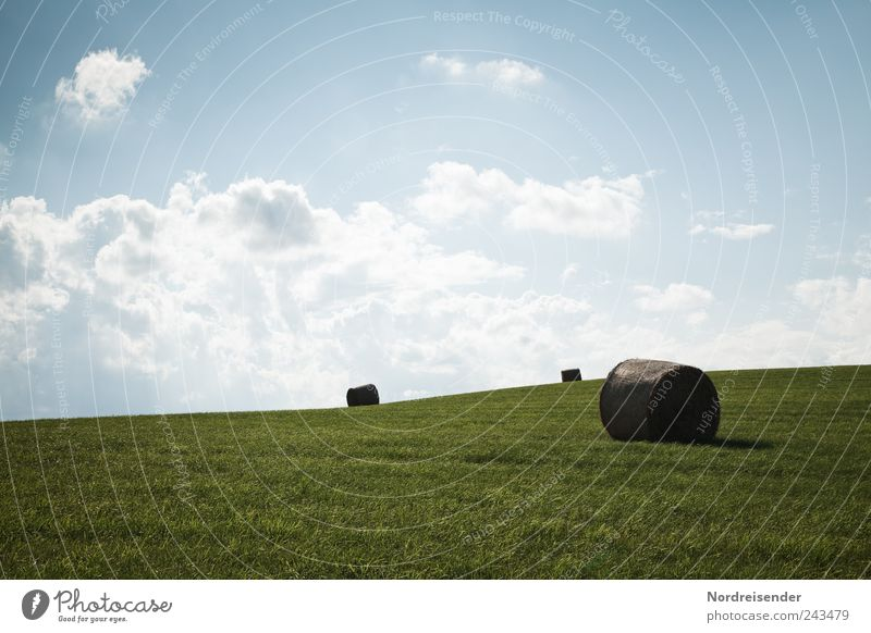 Sky Nature Blue Green Summer Clouds Landscape Mountain Grass Horizon Climate Beautiful weather Agriculture Profession Pasture Harvest