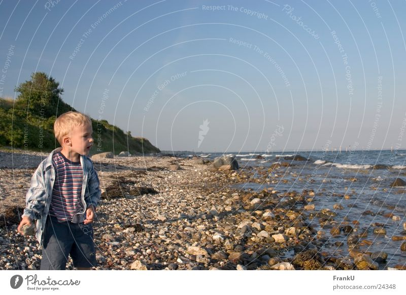 Child Man Nature Water Ocean Summer Beach Boy (child) Baltic Sea Dusk