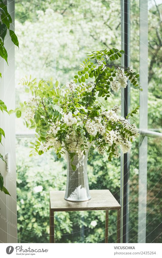 Nature Summer Plant Green House (Residential Structure) Lifestyle Interior design Spring Style Garden Living or residing Design Flat (apartment) Room Decoration