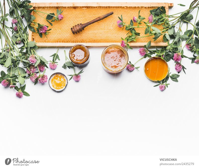 Honey with ladles, combs and wildflowers Food Nutrition Organic produce Vegetarian diet Diet Crockery Glass Style Design Healthy Healthy Eating Nature Flower