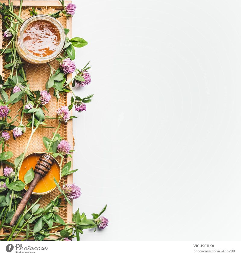Honey in a jar with ladles, honeycombs and wild flowers Life Yellow dipper frame Wild white Background picture Top view healthy food flat lay border vertical