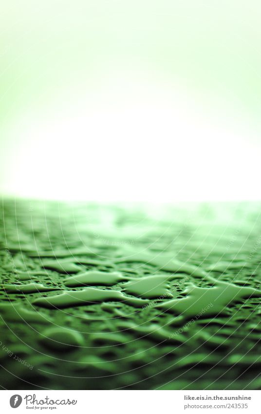 Water Green Movement Rain Contentment Wet Drops of water Esthetic Cleaning Damp Storm Rainwater Thunder and lightning Puddle Environmental pollution