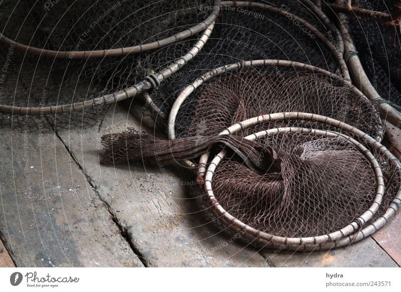Memories of Danish fishermen Attic Fisherman Fishery fishing Net Fishing net Fish trap fishing needs Navigation Network Old Brown Calm Idyll Nostalgia