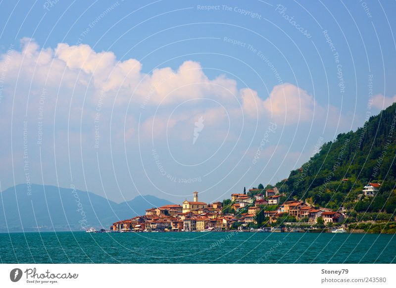 Peschiera Maraglio Summer vacation Island Landscape Water Sky Clouds Sunlight Beautiful weather Coast Lake Village Fishing village House (Residential Structure)