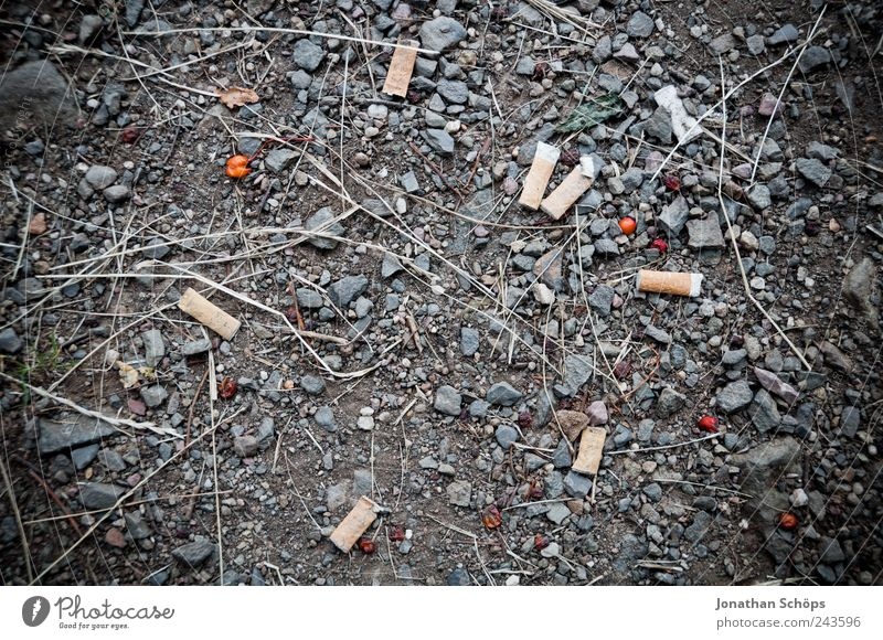 Dirty Floor covering Ground Construction site Smoking Trash Gastronomy Intoxicant Cigarette Berries Gravel Flat Addiction Remainder Unemployment