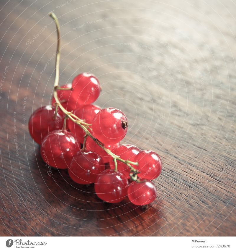 berries Nutrition Organic produce Vegetarian diet Wood Good Juicy Sour Red Redcurrant Stalk Table Bunch of grapes Healthy Vitamin-rich Delicious Fruit Round
