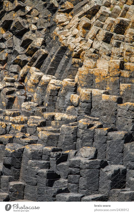 basaltic columns Vacation & Travel Tourism Trip Island Geology Geologist Environment Nature Landscape Earth Rock Coast Stone Natural Yellow Gray