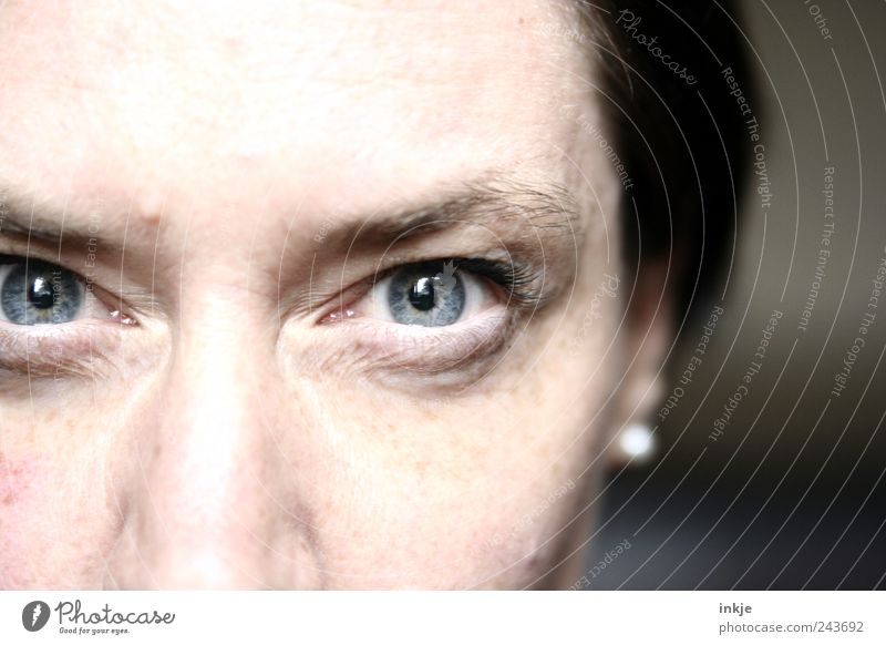 Woman Blue Face Adults Eyes Life Cold Emotions Moody Glittering Communicate Observe Near Concentrate Anger Aggression