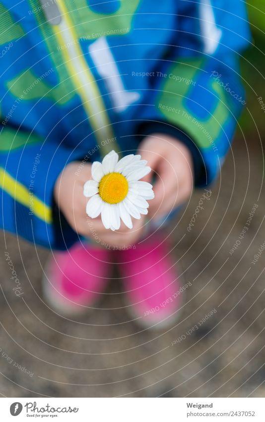 Child Human being Flower Joy Girl Sadness Happy Infancy Birthday To enjoy Baby Gift Harmonious Trust Toddler Positive