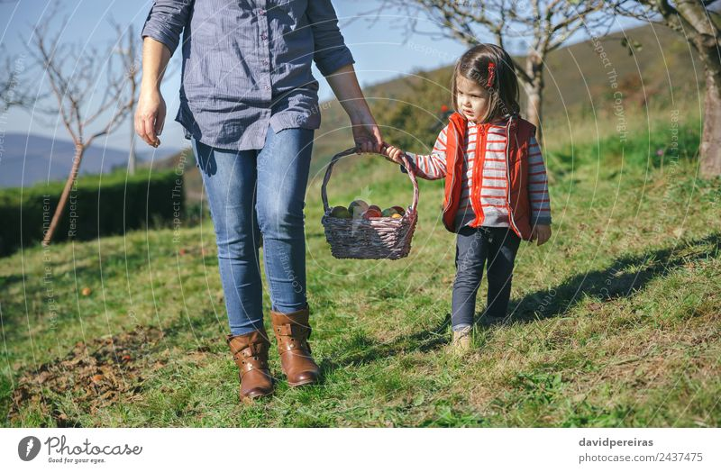 Little girl and woman carrying basket with apples Woman Human being Nature Beautiful Green Hand Red Joy Adults Lifestyle Autumn Natural Happy Small Garden