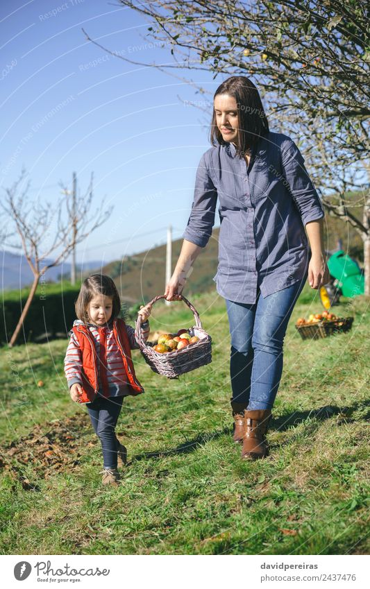 Woman and little girl carrying basket with apples Fruit Apple Lifestyle Joy Happy Beautiful Leisure and hobbies Garden Human being Adults Mother Hand Nature