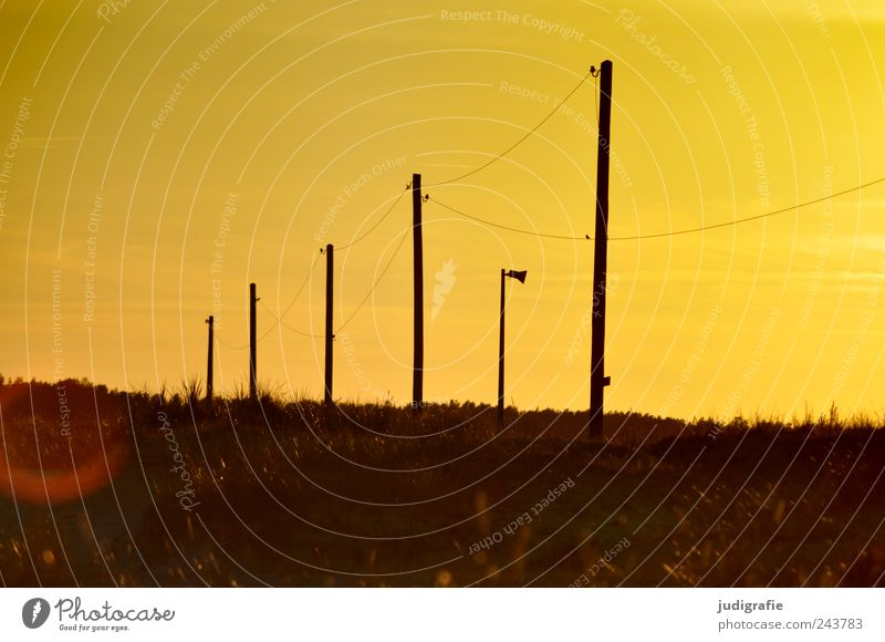 Energy Energy industry Solar Power Environment Nature Landscape Plant Sky Sunrise Sunset Summer Prerow Exceptional Moody power supply Electricity pylon