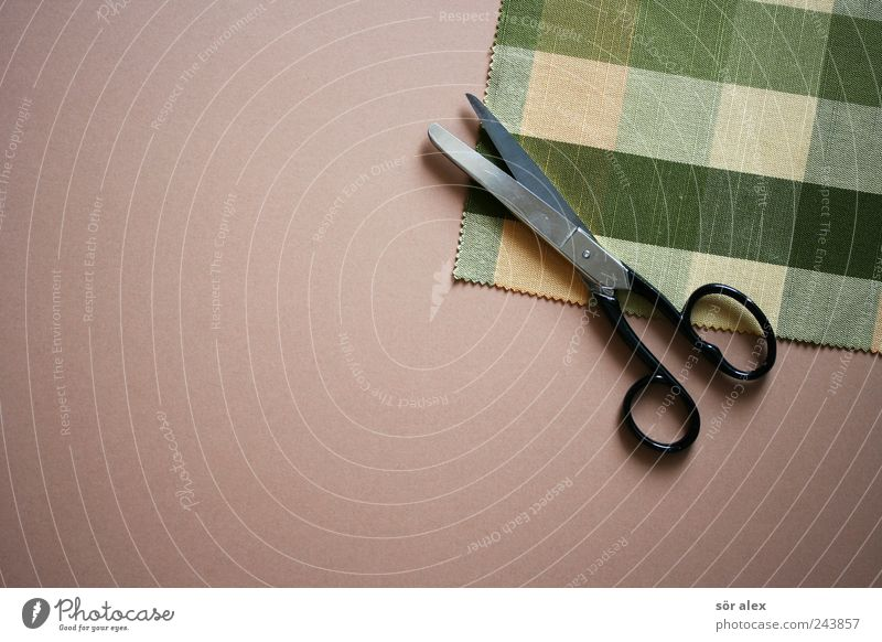 CREATIVE PAUSE Work and employment Tailor Craft (trade) Fashion Cloth Cloth pattern Scrap of fabric Scissors Hip & trendy Beautiful Kitsch Point Green