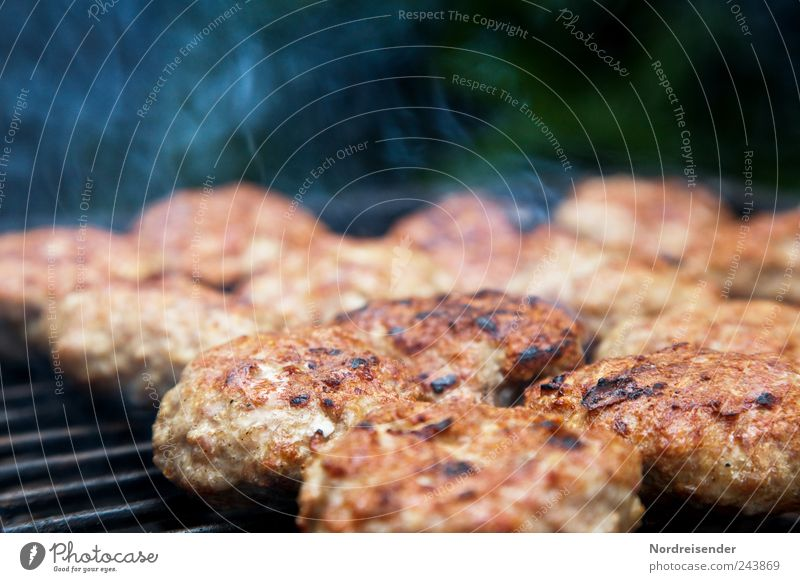 Summer Nutrition Food Overweight Smoke Barbecue (event) Delicious Fat Meat Picnic Fast food Barbecue (apparatus) Grill Snack bar Gastronomy Cooking & Baking