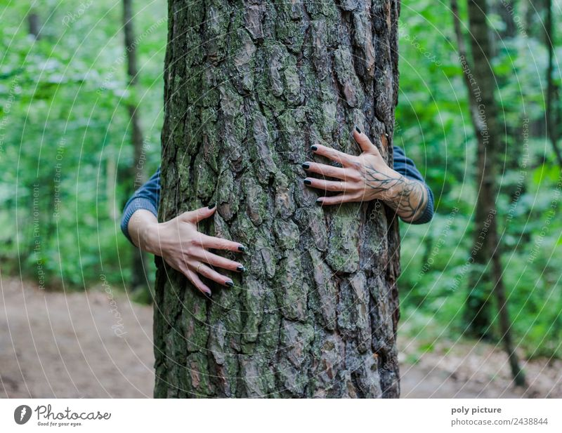 [AM104] - Hands of a young lady embracing a tree Lifestyle Relaxation Meditation Vacation & Travel Hiking Feminine Young woman Youth (Young adults) Human being