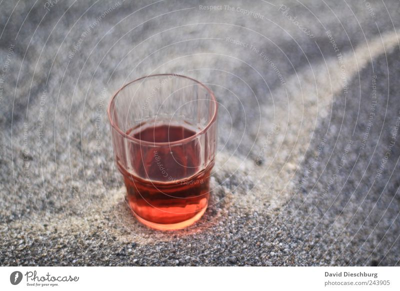 Evening at the sea Beverage Cold drink Glass Red Rose Calm Thirst-quencher Alcoholic drinks Half full Delicious Colour photo Exterior shot Detail Contrast Blur