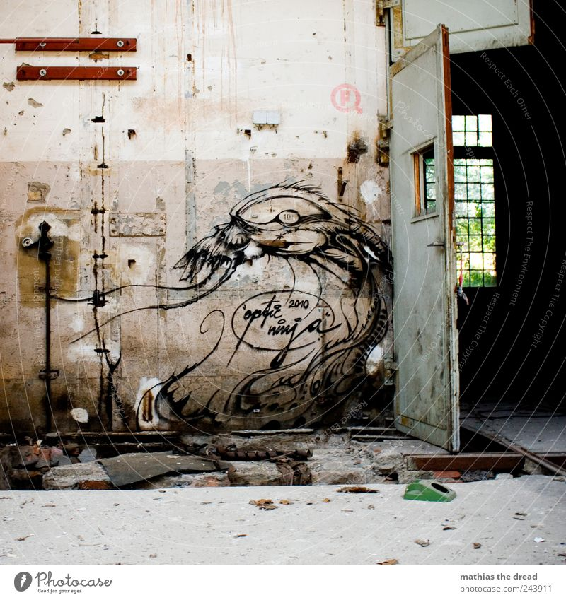 Old House (Residential Structure) Dark Cold Window Wall (building) Graffiti Architecture Wall (barrier) Building Art Door Dirty Exceptional Gloomy Threat