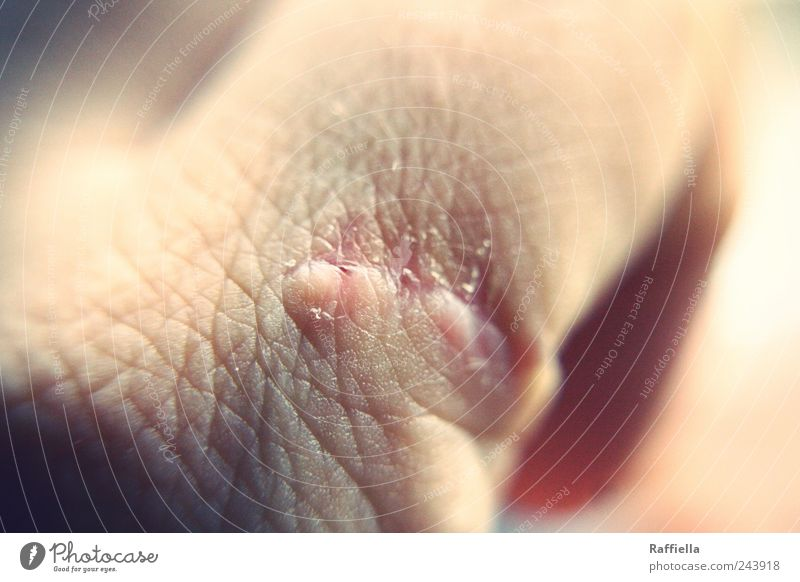 healing Skin Hand Pink Pain Fear Scar Harm Fingers Healing Wound Colour photo Close-up Detail Macro (Extreme close-up) Pattern Structures and shapes Light