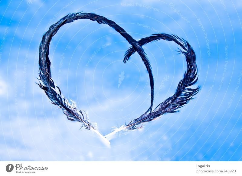 Sky Blue White Clouds Black Love Emotions Happy Dream Moody Heart Decoration Feather Hope Sign Romance