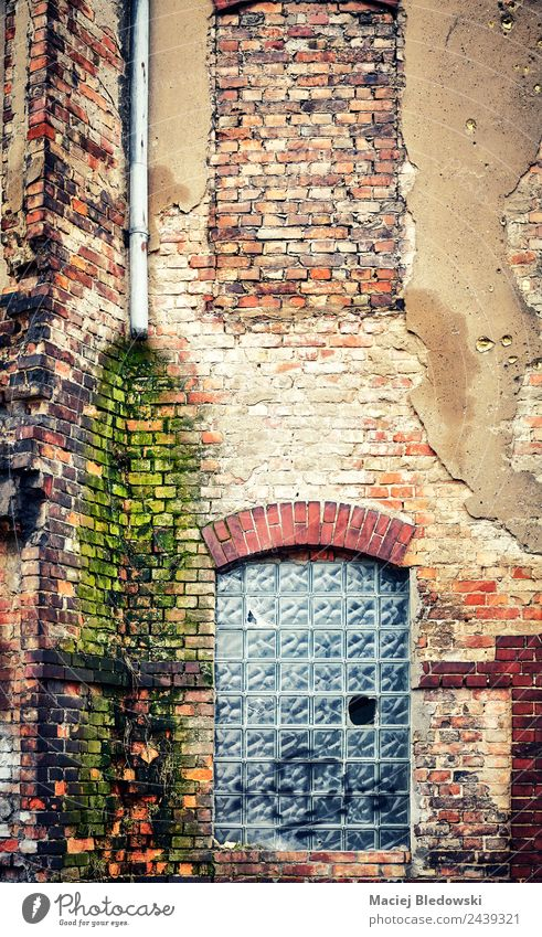 An old brick building wall Living or residing House (Residential Structure) Factory Building Architecture Wall (barrier) Wall (building) Facade Window Old Dirty