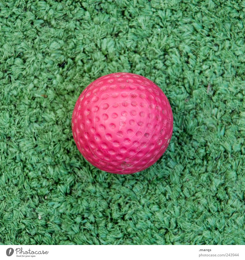 golf Joy Leisure and hobbies Playing Mini golf Sports Golf Ball Plastic Sign Round Green Pink Colour Golf ball Artificial lawn Colour photo Exterior shot Detail