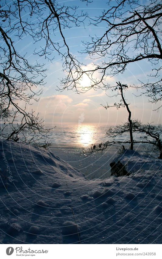 Sky Nature Water Landscape Clouds Beach Winter Cold Environment Coast Ice Beautiful weather Frost Lakeside