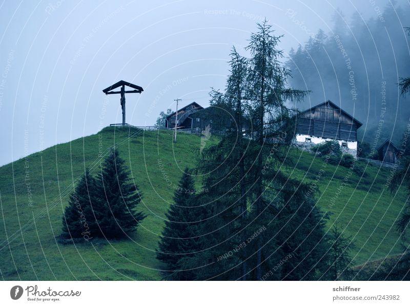 Loneliness Forest Dark Meadow Mountain Sadness Rain Landscape Fog Alps Fir tree Crucifix Hut Slope Bad weather
