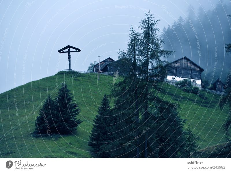 Loneliness Forest Dark Meadow Mountain Sadness Rain Landscape Fog Alps Fir tree Crucifix Hut Slope Bad weather