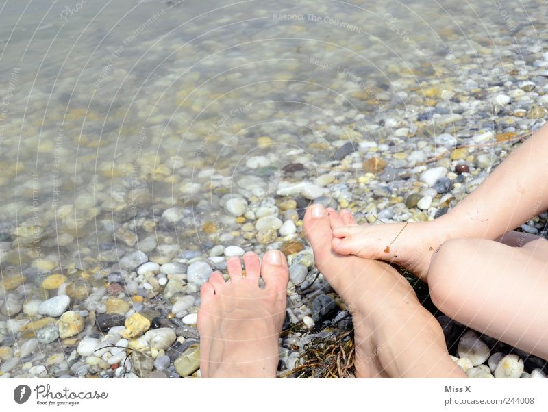 Human being Child Vacation & Travel Ocean Summer Beach Adults Small Stone Legs Lake Feet Friendship Family & Relations Infancy Together