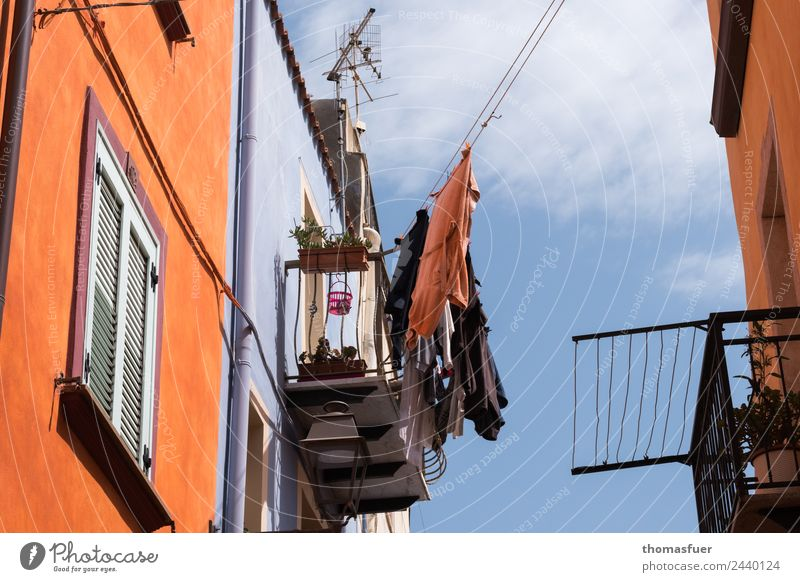 Laundry on a line, picturesque alley, Italy Living or residing House (Residential Structure) Colour Town Street Clothesline Antenna Balcony Housefront Sardinia