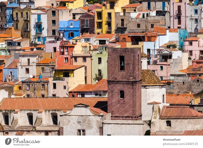 picturesque old town with church tower, colourful houses Vacation & Travel Tourism Far-off places Summer pink Sardinia Italy Europe Small Town Downtown Old town