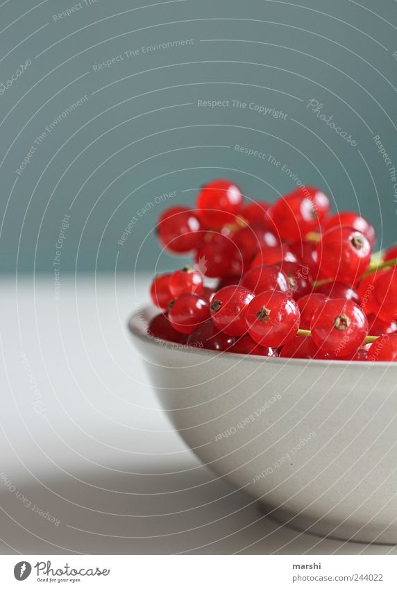 Red Small Fruit Nutrition Food Round Crockery Delicious Berries Diet Bowl Redcurrant