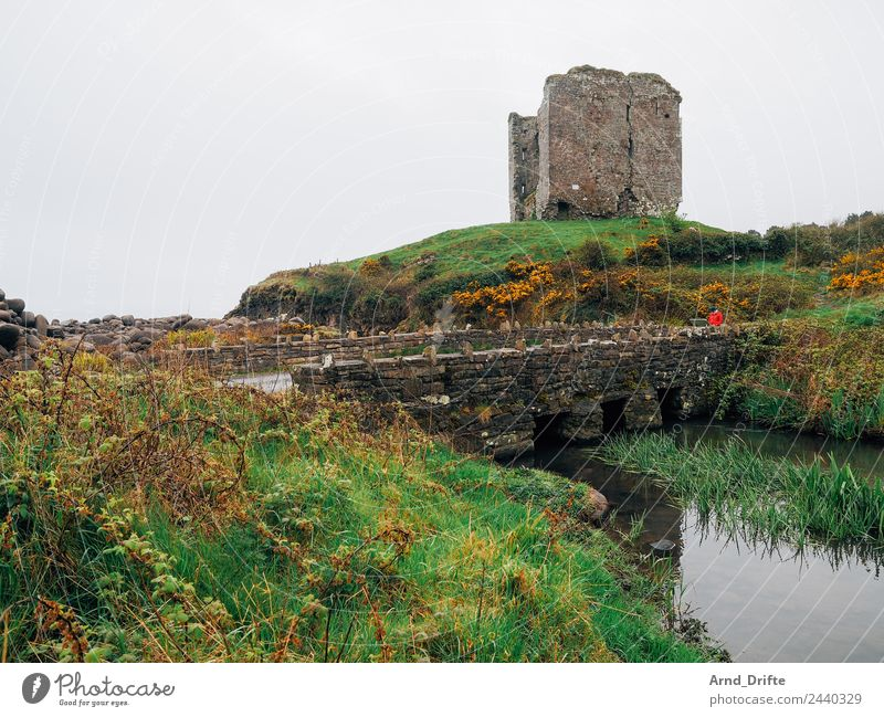 Ireland - Minard Castle Vacation & Travel Tourism Trip Adventure Sightseeing Human being Feminine Woman Adults 1 30 - 45 years 45 - 60 years Nature Landscape