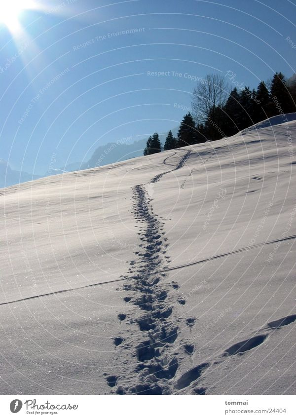 Sky White Sun Blue Snow Hiking Tracks Hill Canton Glarus