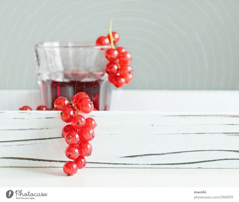 currant juice Food Fruit Nutrition Beverage Drinking Cold drink Juice Glass Red Berries Round Small Juice glass Blur White Thirsty Delicious Tasty