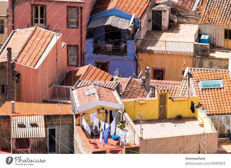 picturesque place from above with blue house Vacation & Travel Summer Beautiful weather pink Sardinia Italy Small Town Downtown Old town Skyline