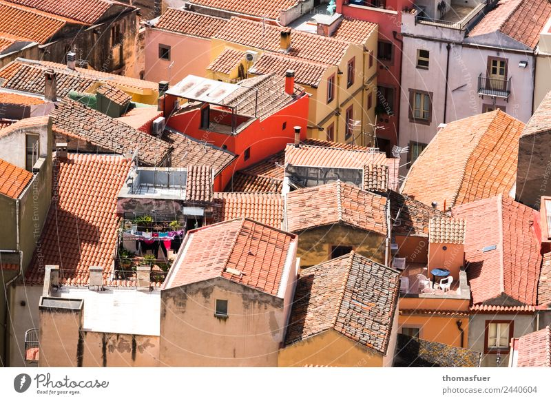 Sardinian village from above with red house Vacation & Travel Beautiful weather pink Italy Small Town Old town House (Residential Structure) Building Terrace