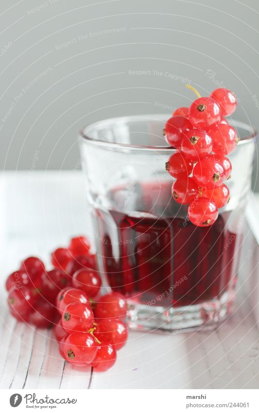 Red Small Glass Fruit Nutrition Food Beverage Round Drinking Berries Juice Sense of taste Sour Tasty Thirsty