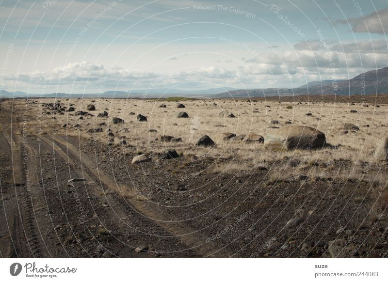 No way too far Environment Nature Landscape Earth Air Sky Clouds Horizon Grass Lanes & trails Stone Dry Target Iceland Ground Steppe Tracks Tire tread