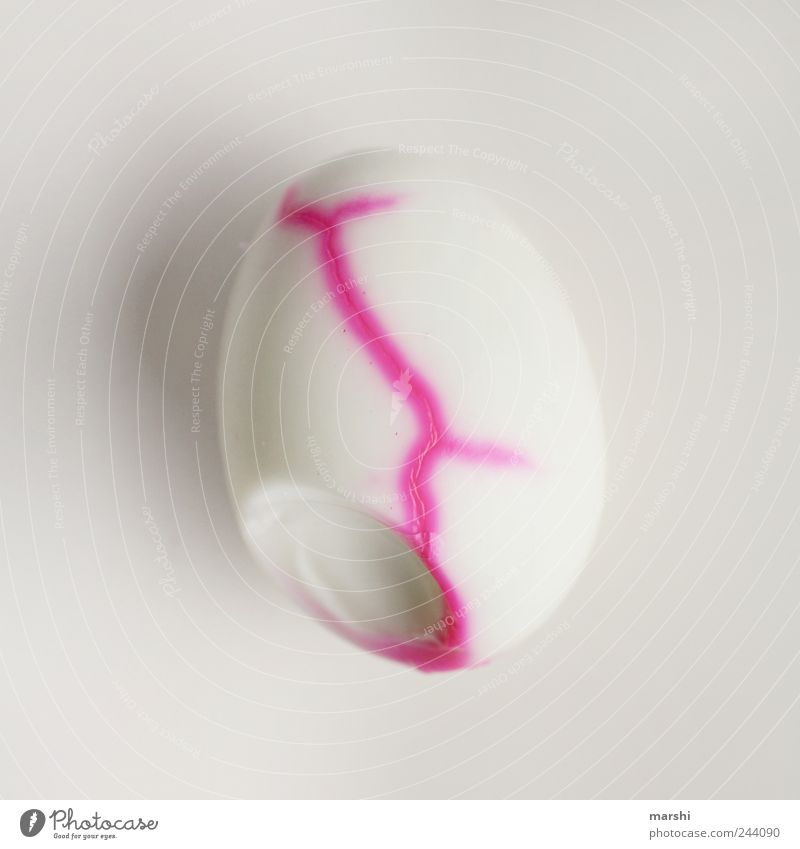 White Line Pink Nutrition Appetite Breakfast Copy Space Egg Easter egg Structures and shapes Isolated Image Animal Molt