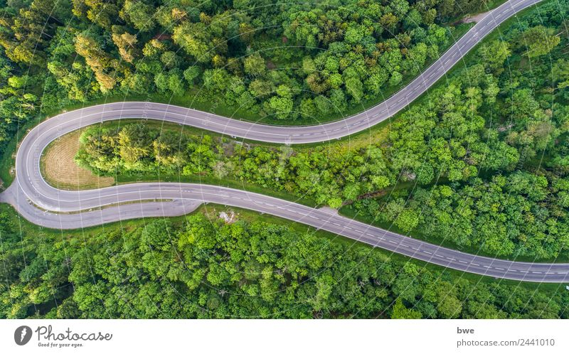 Mountain pass road Lifestyle Joy Sports Motorsports Cycling Agriculture Forestry Technology Energy industry Renewable energy Environment Landscape Summer Tree