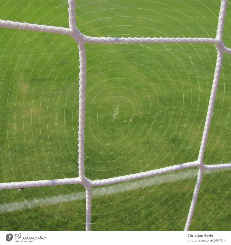 Green White Meadow Sports Line Soccer Lawn Net Grass surface Square Goal Grid Football pitch Soccer Goal Sporting grounds Groomed